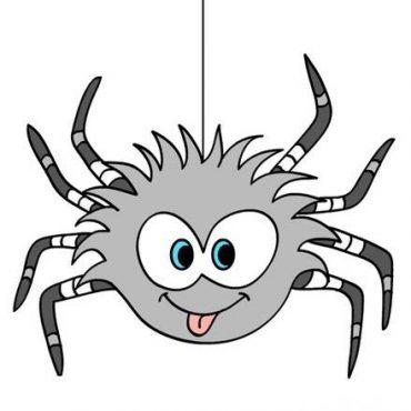 araignée-drole-marrante