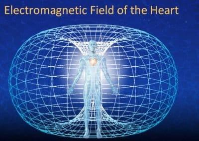 champs electro magnetique cardiaque
